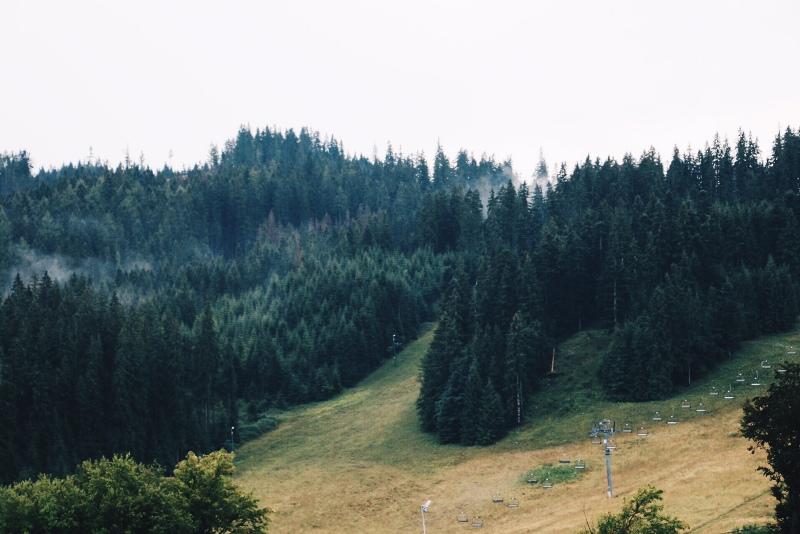 image2 (52)